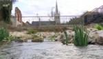 VIDEO. Vissen kunnen de trap nemen in nieuwe waterpartij in Sluispark Leuven