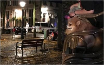 """Maria (88) vermoord door ex-buur tijdens wandeling met hond: """"Alsof hij wraak op ons wou nemen"""""""