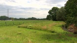 VIDEO. Hoe zit het nu met de nieuwe wijk aan Bekaf in Aarschot?