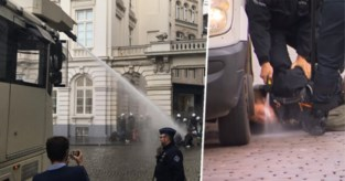 Betoger lijkt pepperspray spuitende agenten vrij te pleiten, maar er zijn twijfels over Facebookpost
