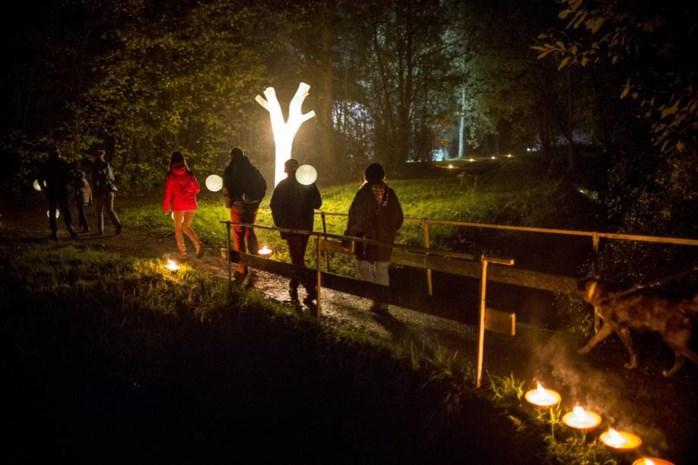 Op ontdekking in de bossen van Vlaams-Brabant
