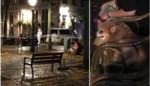 Vijftiger bekent moord op Antwerpse Maria (88), hij blijft aangehouden