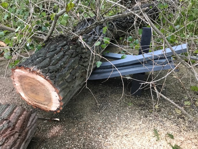 Koksijde en De Panne ruimen alles op na zware lokale storm