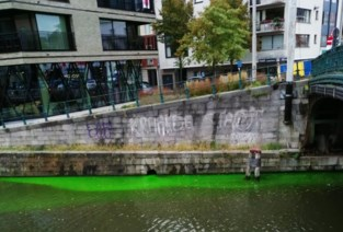 """Gentse Leie kleurt fluogroen: """"Geen paniek, dit is volkomen onschadelijk"""""""