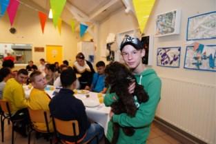 """Puppy Louis is ster van de school: """"Eén knuffel en verdriet is snel vergeten"""""""