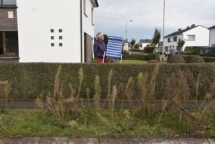 """Johan plaatst strandstoel in tuin voor burgemeester: """"Zo kan hij eens komen genieten van uitzicht met onkruid"""""""
