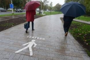 Denderende 'trolleytoeristen' negeren toegangspoort van 1,5 miljoen euro, en daar wil centrumstad iets aan doen