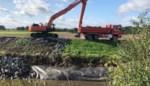 Vlaamse Waterweg herstelt oevers van de Dijle