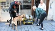 """Dakloze krijgt hulp dankzij hartverwarmende actie handelaar: """"Ik kan niet geloven dat me dit echt overkomt"""""""