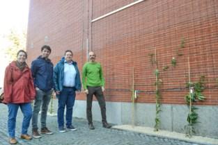 Parking stadsschouwburg krijgt twee groene gevels