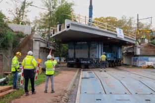 Planckendael dit weekend moeilijker bereikbaar: ruim honderd jaar oude spoorwegbrug vervangen door nieuw dek van 600 ton