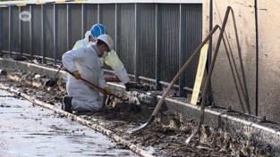 VIDEO. Gespecialiseerde firma verwijdert asbest van Posthofbrug