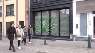 Stadsbestuur reageert verbaasd op cannabiswinkel in schoolomgeving Hasselt