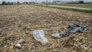 """Slachtafval gedumpt in velden: """"Er hangt al een serieus reukje aan"""""""