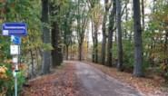 Meer dan dertig bomen gaan tegen de vlakte in de dreven