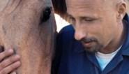 RECENSIE. IJzersterke Matthias Schoenaerts verbaast met gevangenisdrama 'The mustang': wie temt wie?