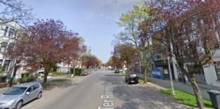 Zeventien zieke bomen vervangen in Ter Rivierenlaan