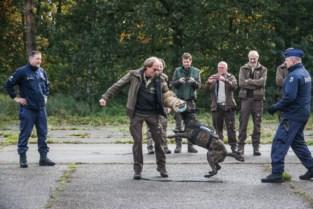 Agressieve hond en baasje met korte lont? Ga vooral niet lopen