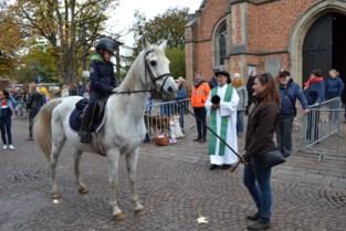 55 paarden gewijd op 41ste paardenwijding