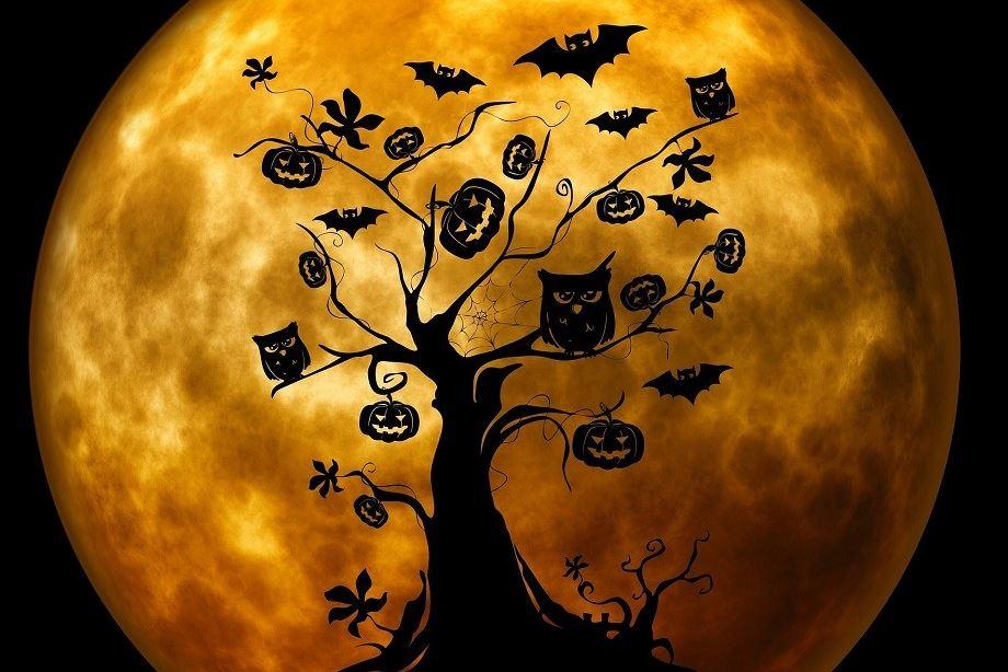 Wemmelse bib in teken van Halloween