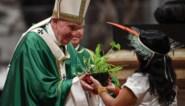 Bisschoppen willen ook getrouwde mannen als priester