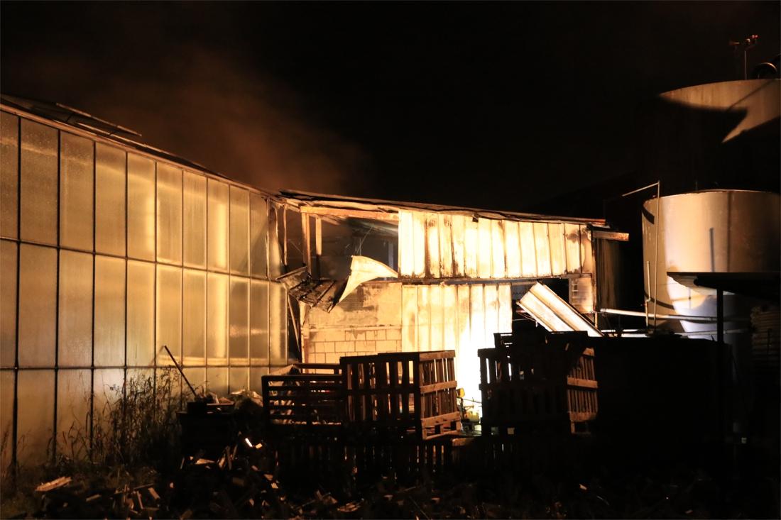 Duizenden slaplantjes gaan in vlammen op na brand in tuinbouwbedrijf