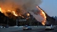 Bosbranden in Los Angeles: miljoenenvilla's verwoest, celebs op de vlucht en werken van Rembrandt en Van Gogh in gevaar