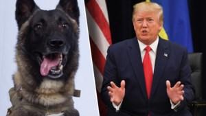 Hond die sleutelrol speelde in operatie tegen ISIS-leider al-Baghdadi uitgenodigd op Witte Huis