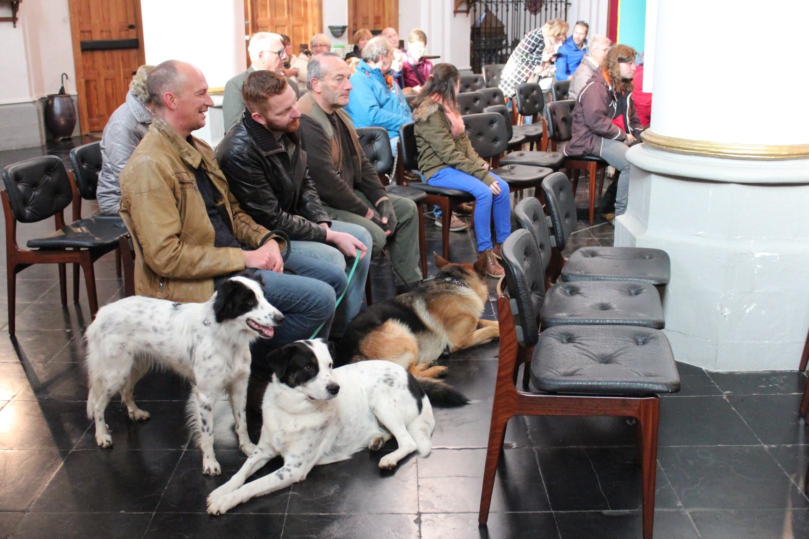 Op wandel na hondenwijding in Kapellen zondag - Het Nieuwsblad