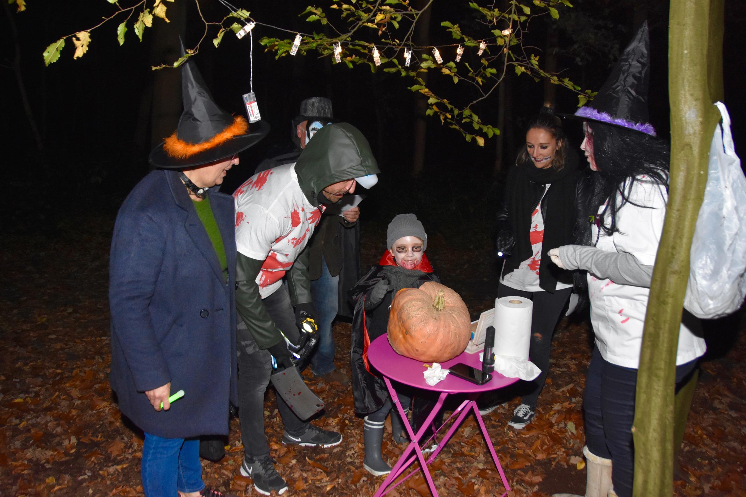 Zoeken naar uitgestoken ogen tijdens Halloweentocht in park van Hingene