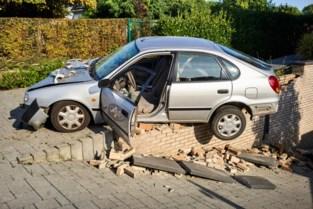 Auto ramt haag en mist nipt buurtbewoner