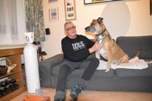 """Terminaal zieke Peter zoekt adoptiegezin voor zijn hond: """"Ik ben te zwak om Zino de wandelingen te geven die hij verdient"""""""