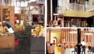 In detail: dit zijn de plannen van Delhaize met de Sint-Annakerk