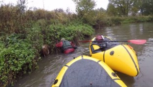 VIDEO. Heldhaftige kajakkers redden kalfje uit rivier