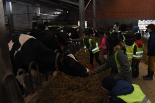 320 schoolkinderen maken kennis met de boerderij