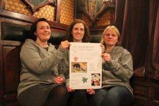 """Kittenopvang organiseert acties om oplopende kosten te kunnen betalen: """"Onze werking hangt af van giften en acties"""""""