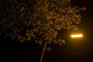 Zoersel wil straatverlichting volledig omschakelen naar ledverlichting
