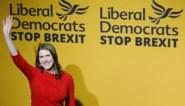 Drie kleine partijen sluiten anti-Brexitalliantie voor Britse verkiezingen
