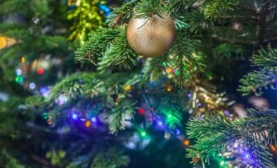 """Waarom nu al de kerstboom zetten een goed idee kan zijn: """"Impact niet onderschatten"""""""
