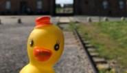 Foto van vrolijke badeend bij Auschwitz wordt blogger niet in dank afgenomen