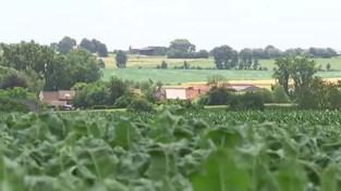 VIDEO. Tienen geeft ook voor 11 windmolens langs E40 negatief advies