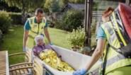 Opvolger van 'De buurtpolitie' krijgt tweede seizoen: nieuwe afleveringen van 'SOS 112' op komst