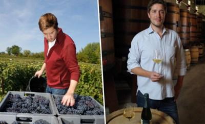 In 2018 oogstte Maxime zijn eerste druiven, nu is de Belg verkozen tot beste wijnbouwer in Frankrijk
