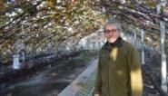 Hij was een van de laatst overgebleven druiventelers uit de streek, maar na drie generaties trekt ook Flup (63) de stekker uit zijn bedrijf