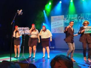 FOTO. Opnieuw vele honderden bezoekers voor Wemmel's Got Talent 4