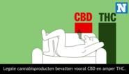 Wat doet cannabis met je lichaam? En wat is het verschil tussen THC en CBD?