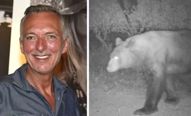 """Martien Meiland zou er fier op zijn: deze beer doet aan """"wijnen, wijnen"""""""