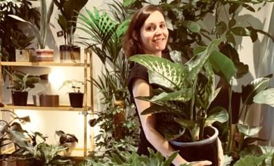 De plant is het nieuwe troeteldier: waarom de jongere generatie gek is van planten