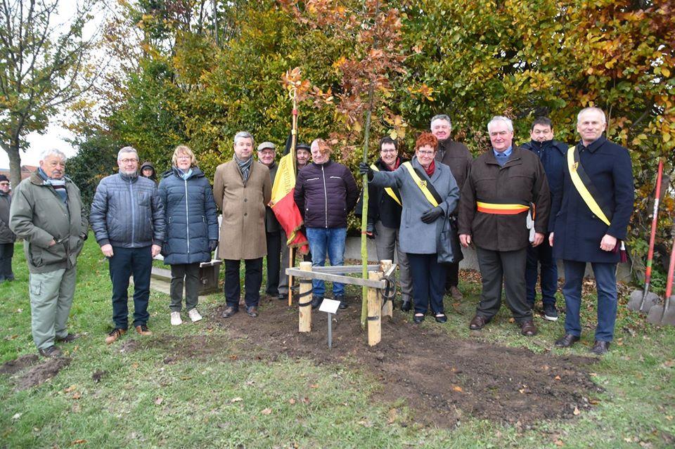 Vredesboom geplant op begraafplaats in Bellingen (Pepingen) - Het Nieuwsblad