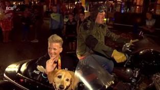 VIDEO. Marieke 'Wielemie' Vervoort wordt allereerste ereburger van Diest